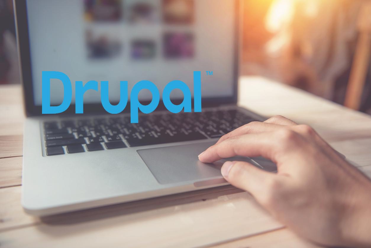 Drupal Web Development Services